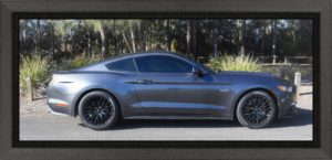 Mustang GT Coupe